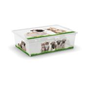 KIS C BOX PUPPY & KITTEN GRASS  L 27L