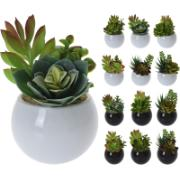 ARTIFICIAL PLANT IN POT 12 ASSORTED DESIGN PLANTS